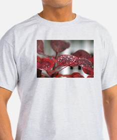 Dew on red leaves, T-Shirt
