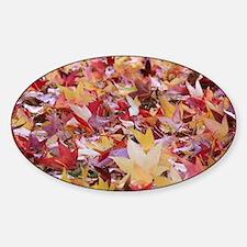 Fire leaves, Sticker (Oval)
