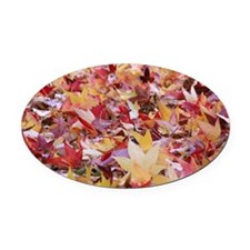 Fire leaves, Oval Car Magnet