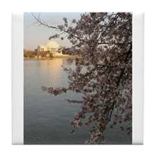 Peal bloom cherry blossom surround Thomas Jefferso