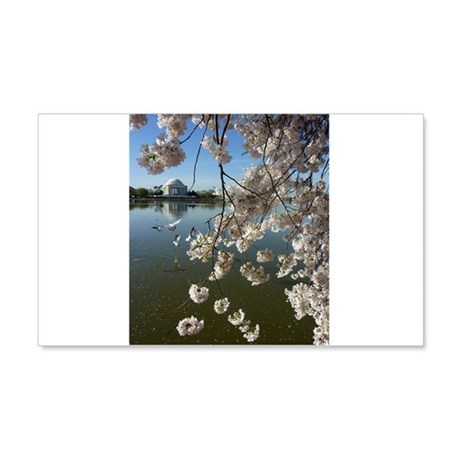 Seagulls Fly Under Peal bloom cherry blossom surro