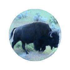 "Yellowstone Buffalo 3.5"" Button"