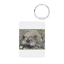 Walrus Head Keychains