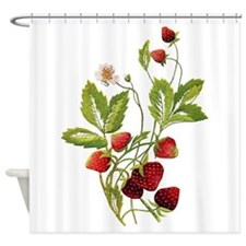 STRAWBERRIES_Embroidery copy.png Shower Curtain
