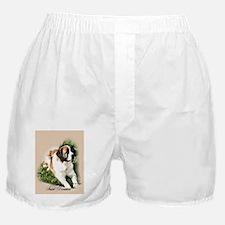 Saint Bernard Art Boxer Shorts