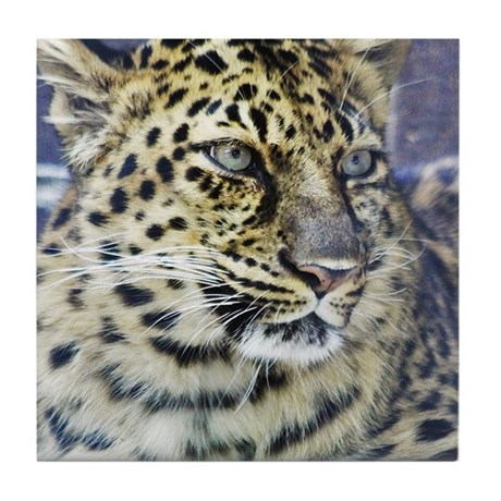 \Amur Leopard Tile Coaster