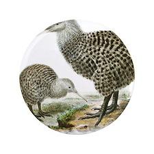 """Great Spotted Kiwi - Apteryx haasti 3.5"""" Button"""
