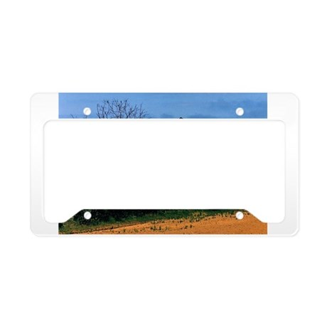 American Barns No. 2 License Plate Holder