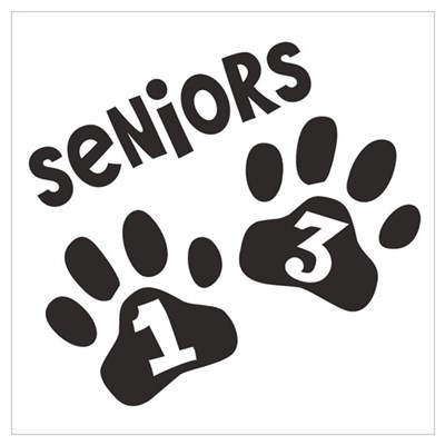 Seniors 2013 Paw Prints Wall Art Canvas Art