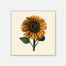 "Daniel Froeschl Sunflower Square Sticker 3"" x 3"""