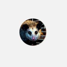 The Opossum Mini Button