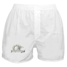 1 Squirrels Wild 13x6 new.png Boxer Shorts