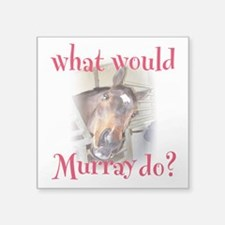 """What Would Murray Do Square Sticker 3"""" x 3&qu"""