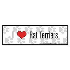 I (heart) Rat Terriers Bumper Bumper Sticker