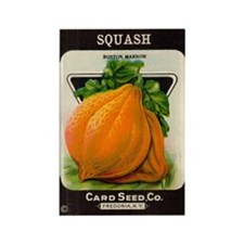 Antique Seed Packet Art Squash Rectangle Magnet