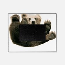 Brown Bottom Bear Cub Playful Fuzzy Wuzzy Picture Frame