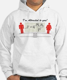 I'm Attracted to you Hoodie