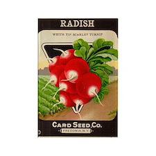 Antique Seed Packet Art Radish Rectangle Magnet