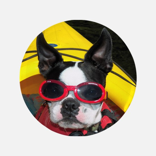 "Red Goggled Boston Terrier 3.5"" Button"