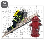 Fireman on Ladder on Fire Hydrant Puzzle