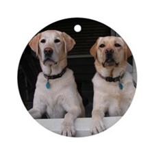 Aug Lab of the Month Ornament (Round)