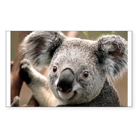 Cute Koala bear Sticker (Rectangle)