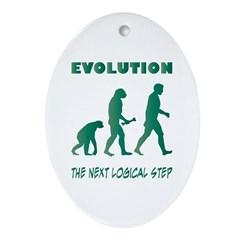 Evolution Oval Ornament