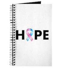 Pink & Blue Ribbon Hope Journal