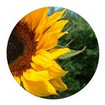 Edge of a sunflower for round ornament.png Round C