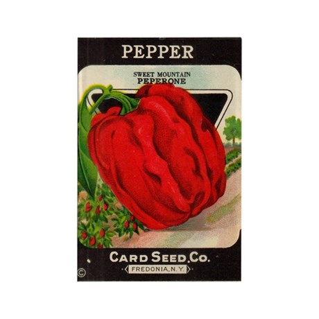 Antique Seed Packet Art Pepper Rectangle Magnet
