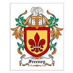 Freeney Coat of Arms Small Poster