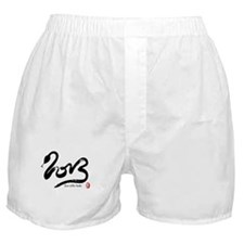 Year of the Snake 2013 Calligraphy Boxer Shorts