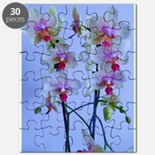 twin stems Puzzle