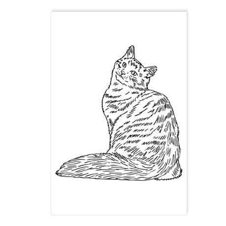 SIBERIAN CAT Postcards (Package of 8)