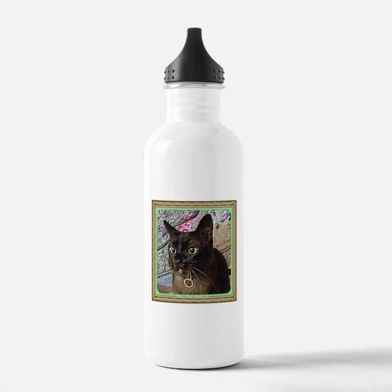 Kiwi in a box - 2 Sports Water Bottle