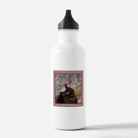 Kiwi in a box - 5 Sports Water Bottle
