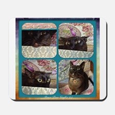 Kiwi in a Box, series 1, four images Mousepad