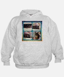 Kiwi in a Box, series 1, four images Hoodie