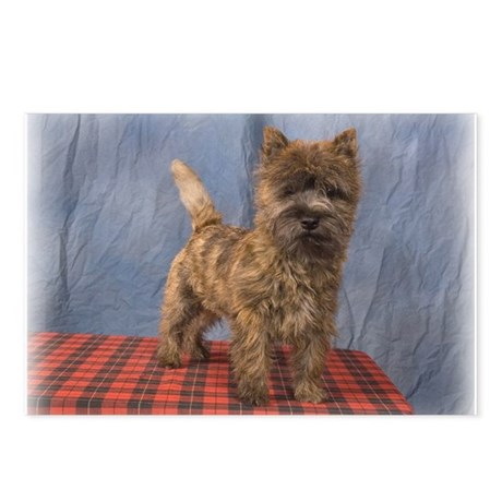 "Cairn Terrier Pup ""Munch"" Postcards (Package of 8)"