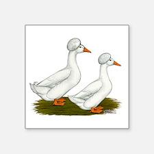 """White Crested Ducks Square Sticker 3"""" x 3"""""""