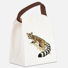 Ringtail cat Canvas Lunch Bag