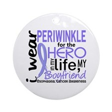 Hero In Life 2 Esophageal Cancer Ornament (Round)