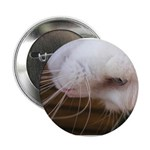 Upside down Peekaboo Button