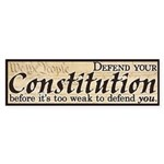 Defend your Constitution! Sticker (Bumper)