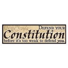 Defend your Constitution! Car Car Sticker