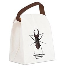 Stag Beetle Canvas Lunch Bag