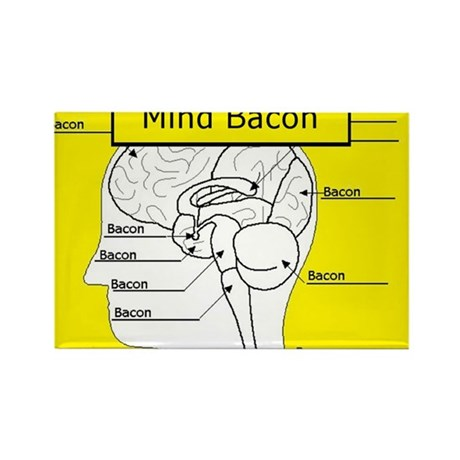 Mind Bacon Rectangle Magnet