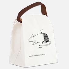 Unique Bonk Canvas Lunch Bag