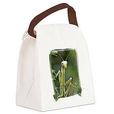 Mantis 475 Canvas Lunch Bag