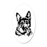 Belgian malinois Car Magnets